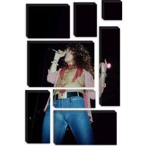 Robert Plant of Led Zeppelin 1973 Photographic Canvas Art