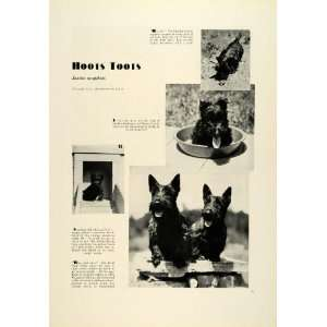 1931 Print Scottish Terrier Dogs Pets Marguerite Kirmse