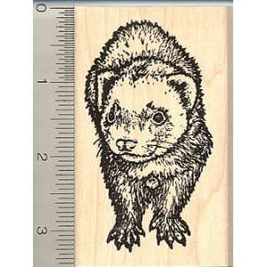 Ferret Rubber Stamp Arts, Crafts & Sewing