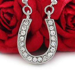 CLEAR HORSE SHOE CRYSTAL PENDANT NECKLACE JEWELRY N160