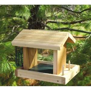 Seed, Suet and Fruit Bird Feeder   Different kinds of Feed, Large Seed